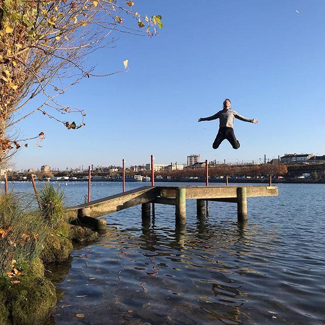 Tempête de Cygnes ce matin sur la Seine (cf ma storie). Avec mon pote de basket, on a une théorie. Comme ça caille dans les airs, on se dit qu'ils se réchauffent dans l'eau, qui est plus chaude. Ou alors qu'ils se rassemblent avant de migrer. Mais est-ce que ça migre un cygne ? Bref, dans tous les cas, les cygnes et moi, on a bien profité de ce soleil automnal et c'était une sortie fort chouette. En plus je n'ai pas eu mal à ma cheville. Un bon signe (huhu) pour la suite ? #cygne #signe #lebonheurestenbanlieue