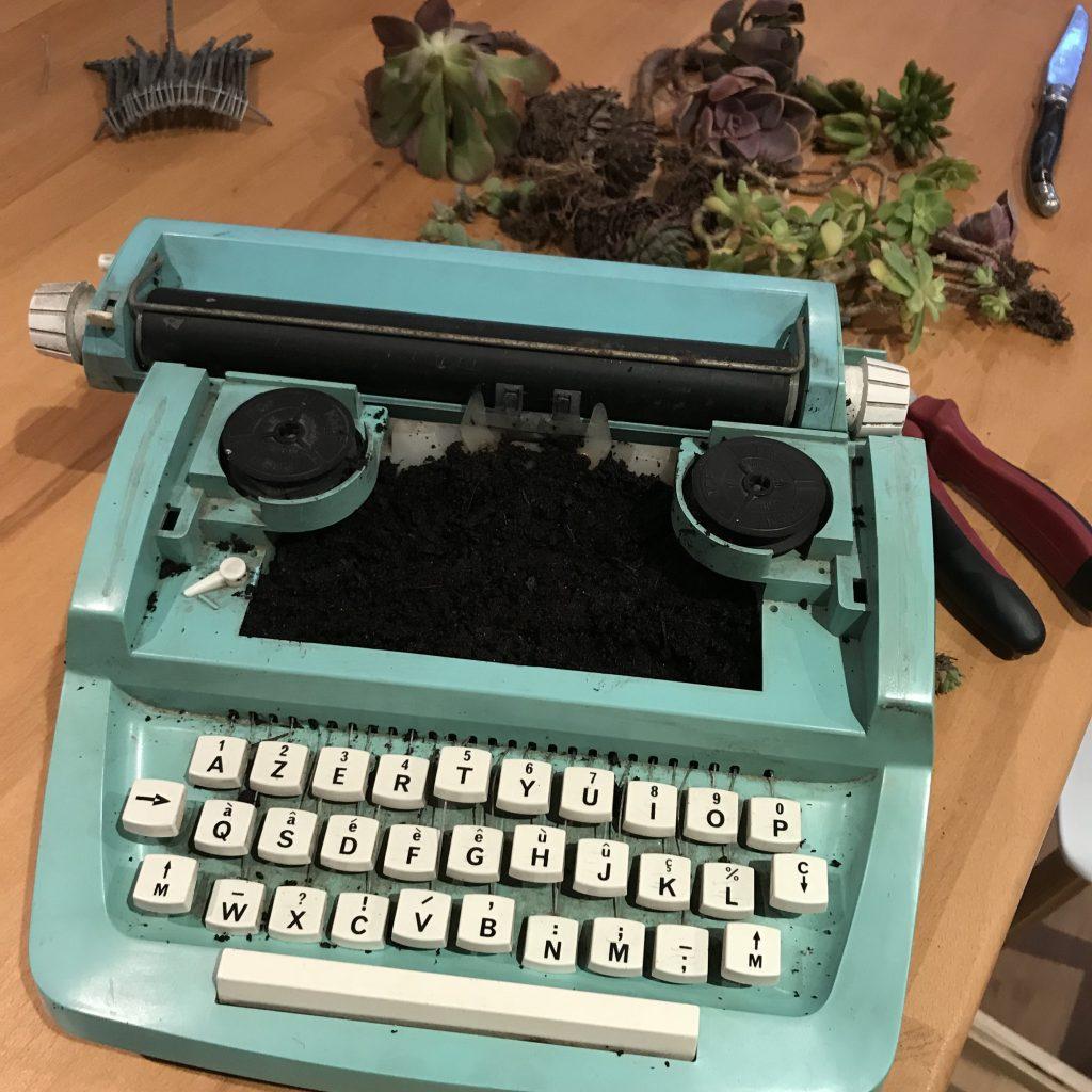 machine à écrire pot à plante