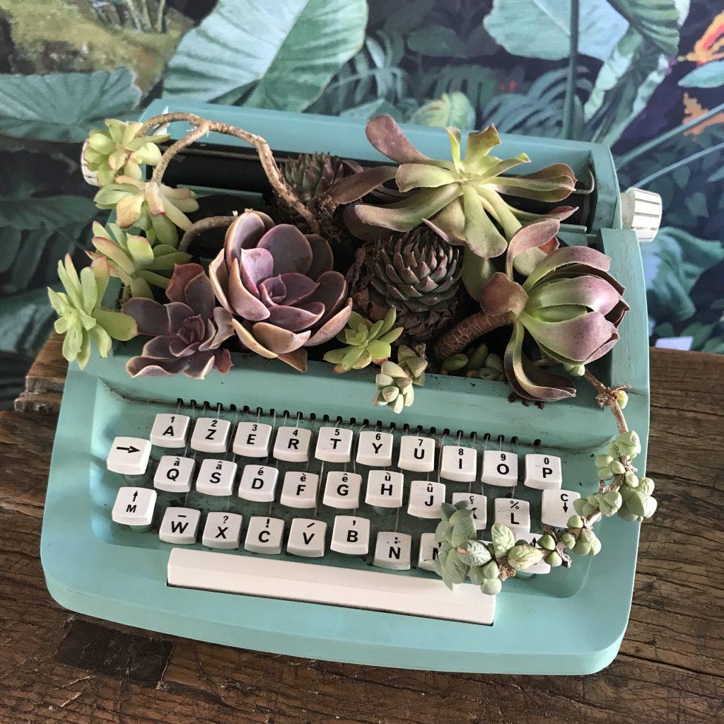 machine à écrire succulente