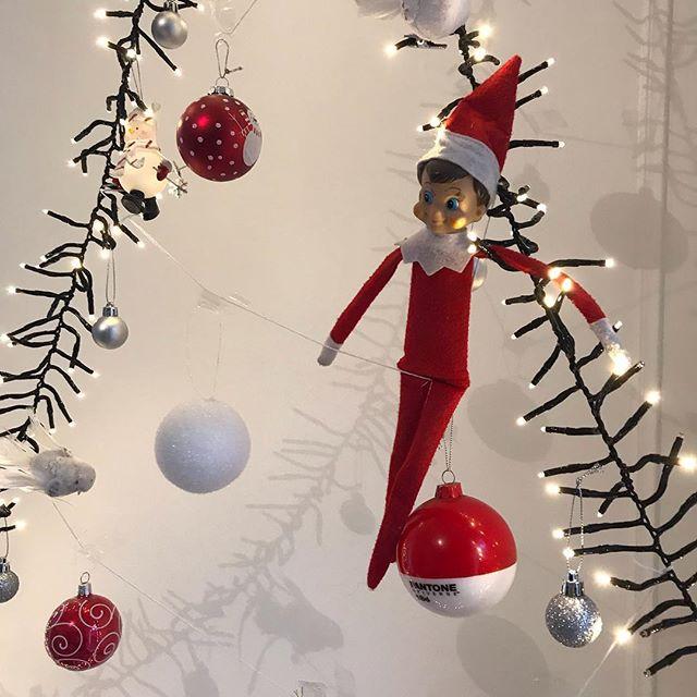 Comme un peu partout, il est de retour :) #elfontheshelf (pour ceux qui ne savent pas si il est, tapez «elf on the shelf ciloubidouille» sur google et vous aurez toutes les infos sur cette joyeux tradition de Noël :) !