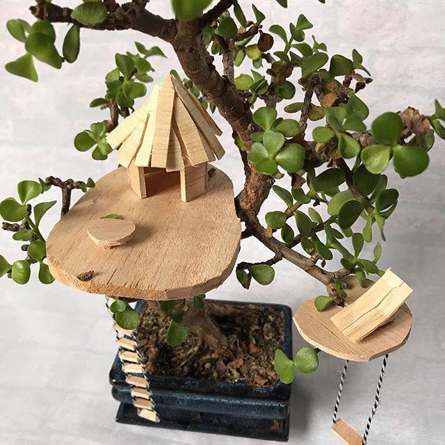Je vous propose un atelier mini cabane dans les arbres samedi 2 février, à 10h :). Depuis que je construis des petites maisons dans les branches de mes plantes, mon cerveau vagabonde encore plus. Au-delà du plaisir de la création, du temps pour soi, cet atelier est un vrai retour à l'enfance ! Pour vous inscrire, c'est sur le site de @les_ateliers_de_la_renarde_ Venez avec votre plante et vos sourires. Je m'occupe du reste ! #maviecreative #ciloubidouille #ateliercreatif #cabanedanslesarbres