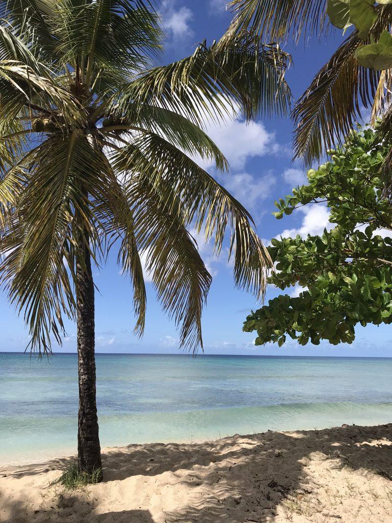 la plage du souffleur, une plage de rêve en Guadeloupe