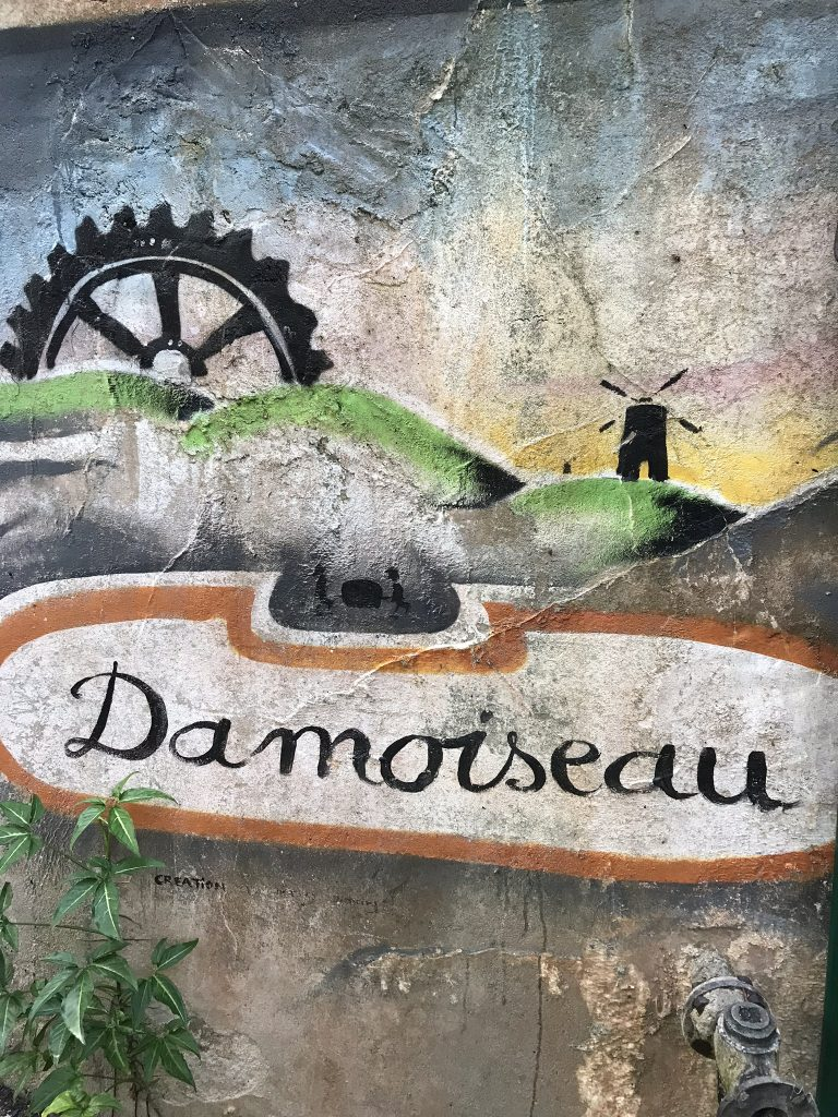 visite de la distillerie Damoiseau en Guadeloupe