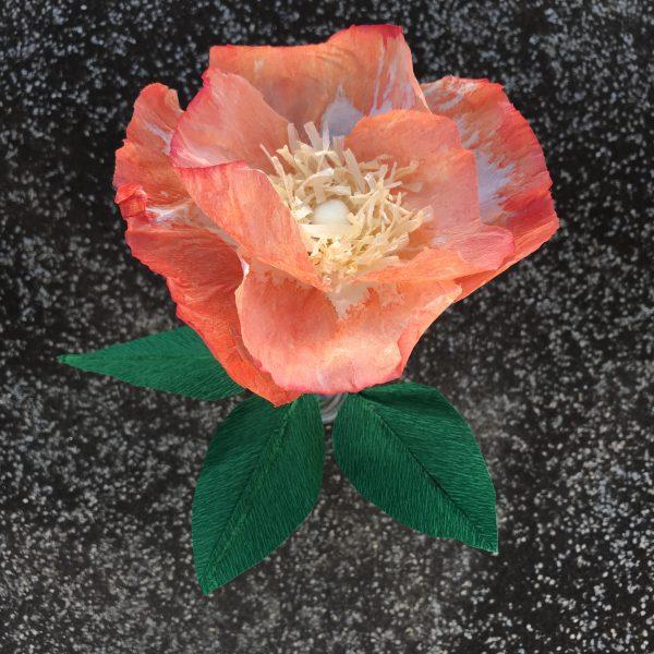 atelier fleur en papier