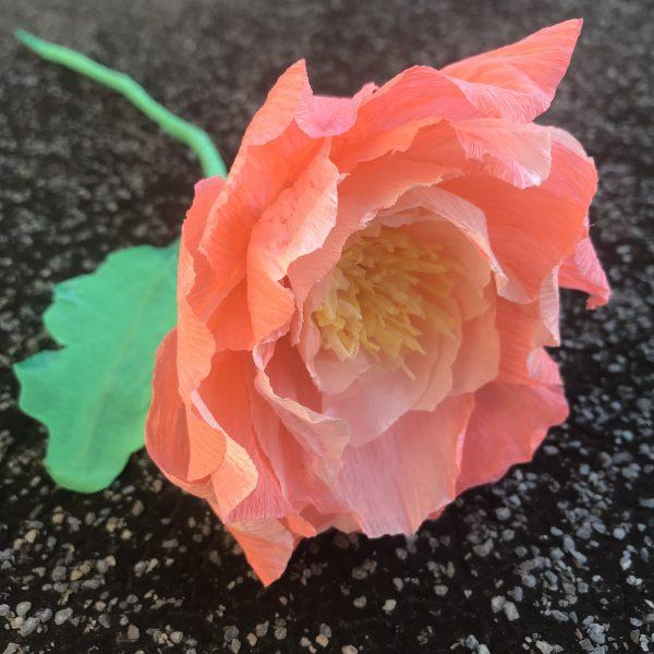 atelier fleur papier crépon