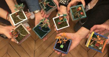 atelier créatif pour fabriquer un mini jardin