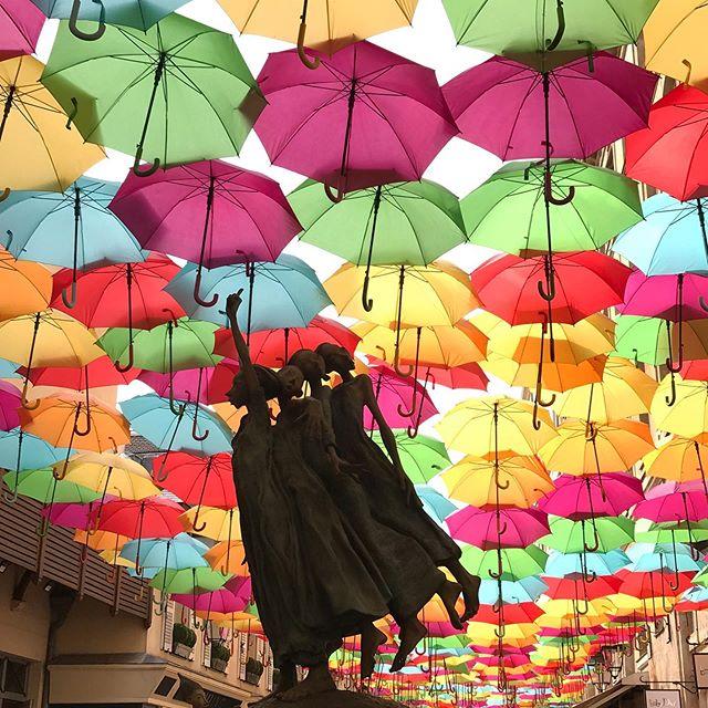 Je ne sais pas d'où vient cette tradition de suspendre des parapluies dans le ciel des rues. Depuis quelques années, j'ai croisé des installations de ce type dans plein de pays, comme ici à côté de la Madeleine. Vous savez vous ? #paris #umbrella #parapluie