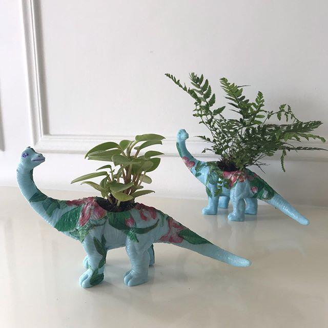 Il y a cette citation de Jacques Brel qu'on voit souvent refleurir à l'heure des voeux de bonne année. «Je vous souhaite des rêves à n'en plus finir et l'envie furieuse d'en réaliser quelques-uns». Je crois que ça définit assez bien mon ADN. Des rêves et cette envie furieuse. Le hic, c'est que mes rêves volent bas et que mes envies furieuses ressemblent à ces dinosaures bleus. Cette idée a tourné dans ma tête si longtemps qu'elle a fini par devenir une priorité. Et maintenant que j'ai fini la boucle de la création, je me sens apaisée. Heureuse. Etrangement forte. Avant la prochaine idée futile et l'envie furieuse de la réaliser... J'aimerais tellement avoir la même impétuosité et le même succès dans la réalisation de ma vie ! Et que tout devienne plus joli. #upcycling #dinosaur #plantpot #urbanjungle #mesplantes #diy #greendiy #ciloubidouille