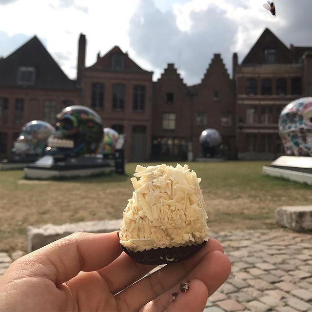 Journée à Lille chez une amie de Wuhan. Des mois (années) que je m'étais dit que je viendrai ici, et finalement, m'y voilà dans ce coin des Flandres. Ben c'est bien joli !