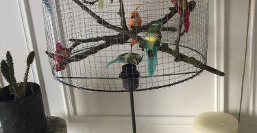 Lampe grillage à oiseau