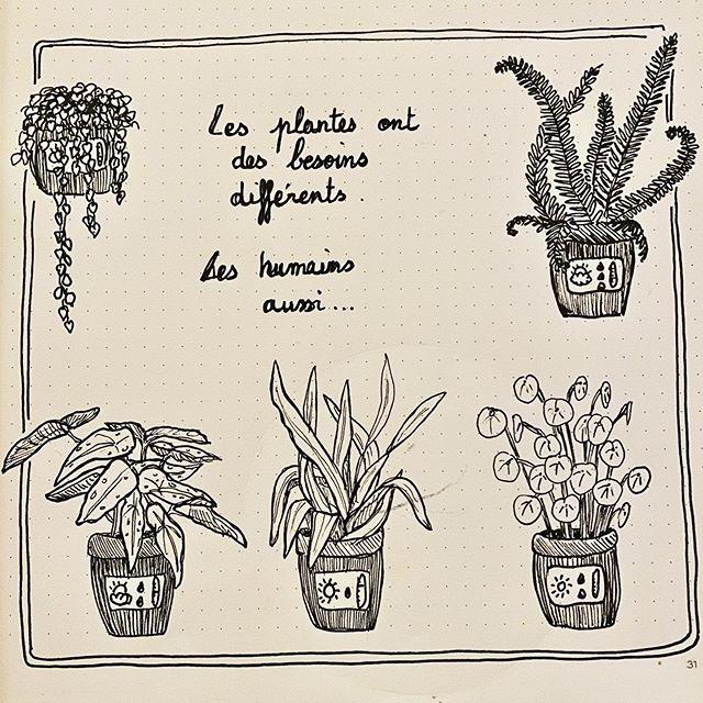 Les plantes ont des besoins différents. Les humains aussi.