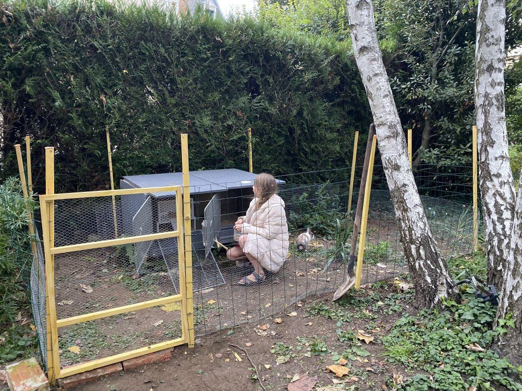 enclos à lapin extérieur
