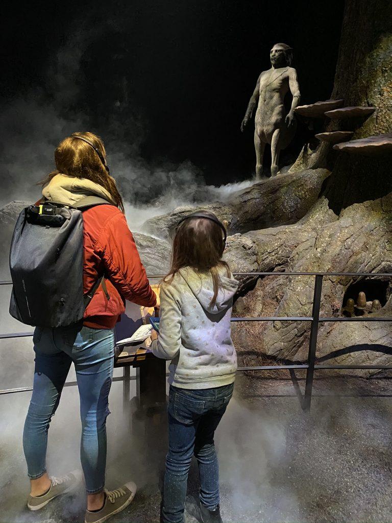 Firenze centaure Harry potter