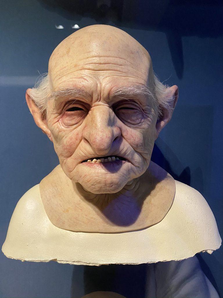 moulage gobelin Harry potter