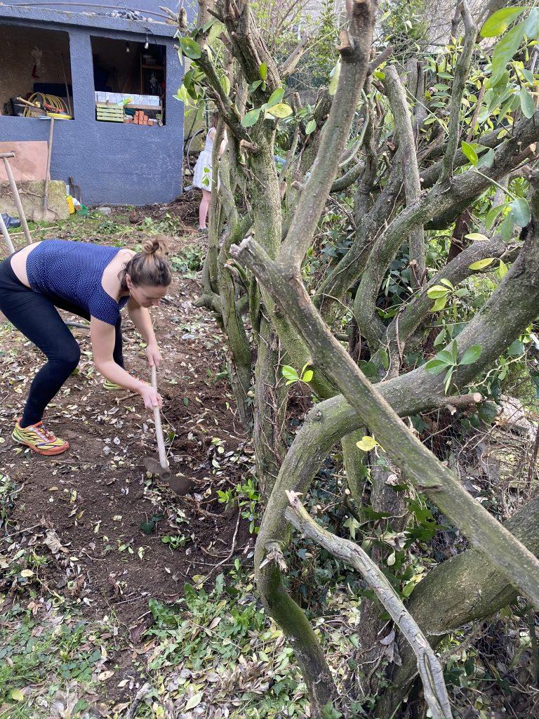 jardinage et confinement