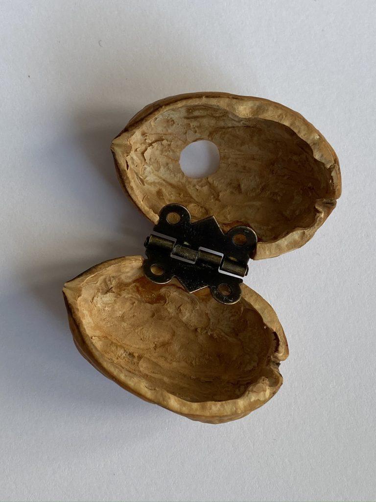 coquille de noix mini maison