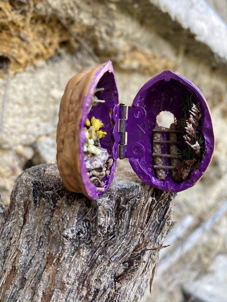 Une mini maison dans une coquie de noix