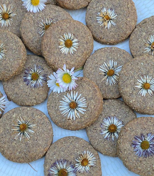 Biscuits aux pâquerettes et aux pissenlits