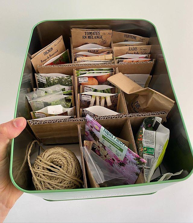 Fabriquer un grainetier avec du carton