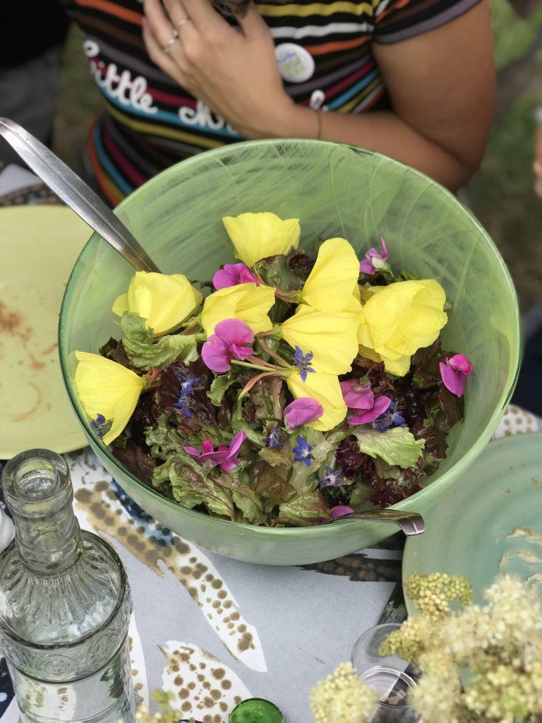 stage de cuisine aux plantes sauvages