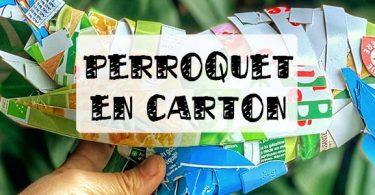 perroquet en carton alimentaire
