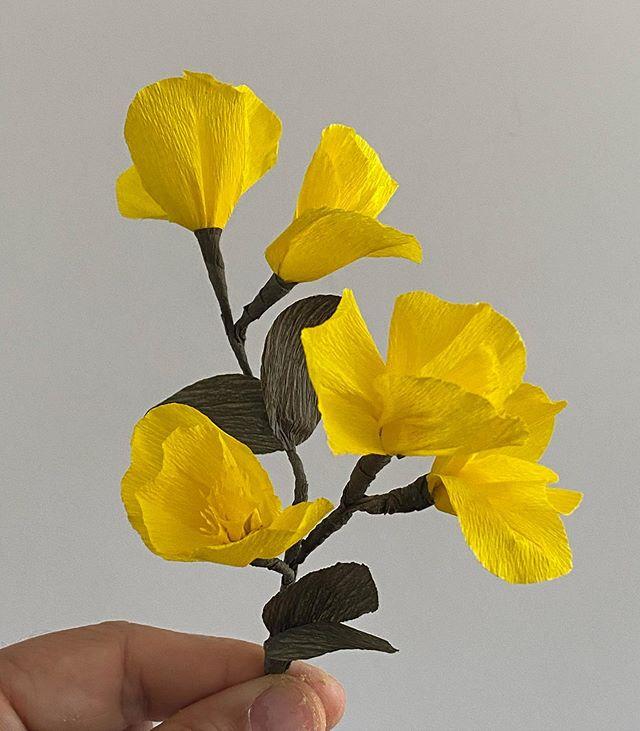 Si les fleurs ne sont plus périssables, alors ça veut dire que je n'aurai plus de bonbons ??? Arg... ça ne m'arrange pas trop cette histoire de papier crépon finalement ! Parce que c'est tellement bon les bonbons, même si c'est pas toujours présentable. Bref... c'était mon bricolage en 10 minutes du jour, pour ne pas jeter les restes d'une fleur plus grosse mais qui doit rester secrète pour le moment :). Sinon, j'en profite pour faire un point «Ciloubidouille joue à la marchande» : j'ai publié un article sur des colliers dessinés par bibi à acheter sur mon blog. Et j'ai refait des stocks de clitoris... Dernière surprise, j'ai même mis en vente des boucle d'oreille clitoris ! J'espère que quelque chose vous plaira :). #croisagededoigts #papiercrepon #fleurenpapiercrepon #crepepaperflowers #crepepaper #jemusclemacréativité #ciloubidouille