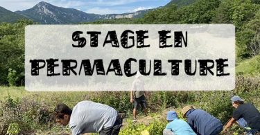 stage en permaculture