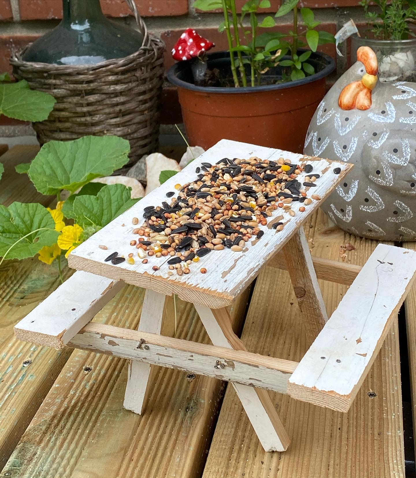 table Pique-nique pour oiseaux