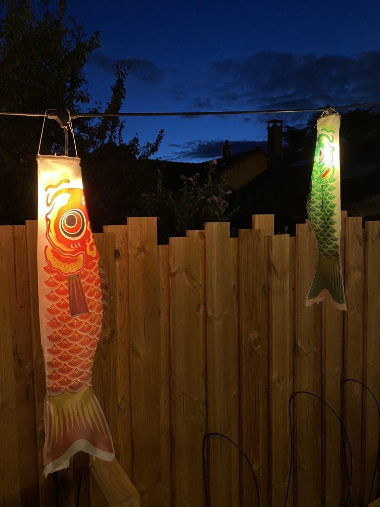 poisson japonais manche à air