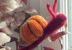 escargot citrouille