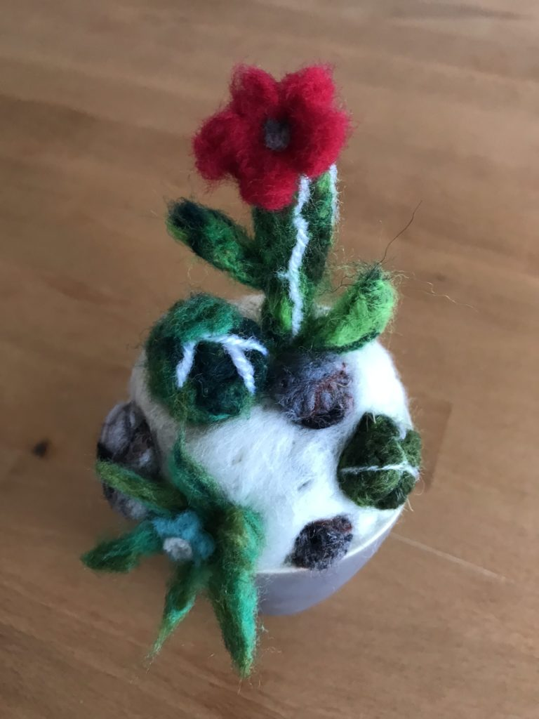 cactus laine cardée