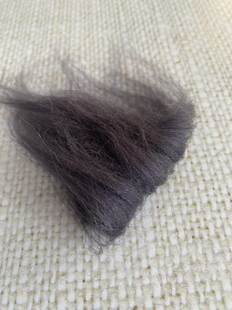 kit laine cardée débutant