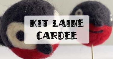 kit d'initiation à la laine cardée