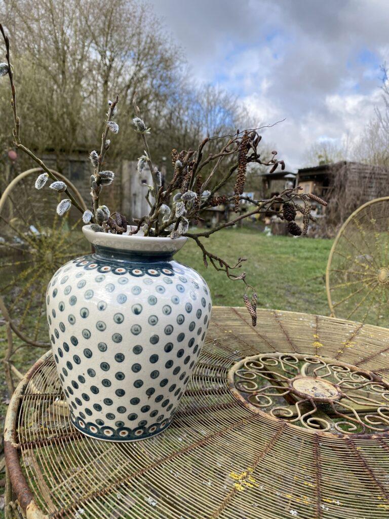 jardin d'Hélène proisy plantes sauvages