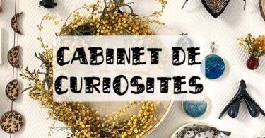cabinet de curiosité créative
