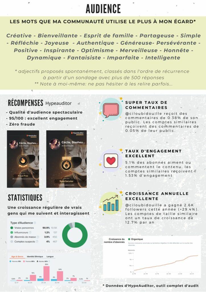 kit media ciloubidouille audience