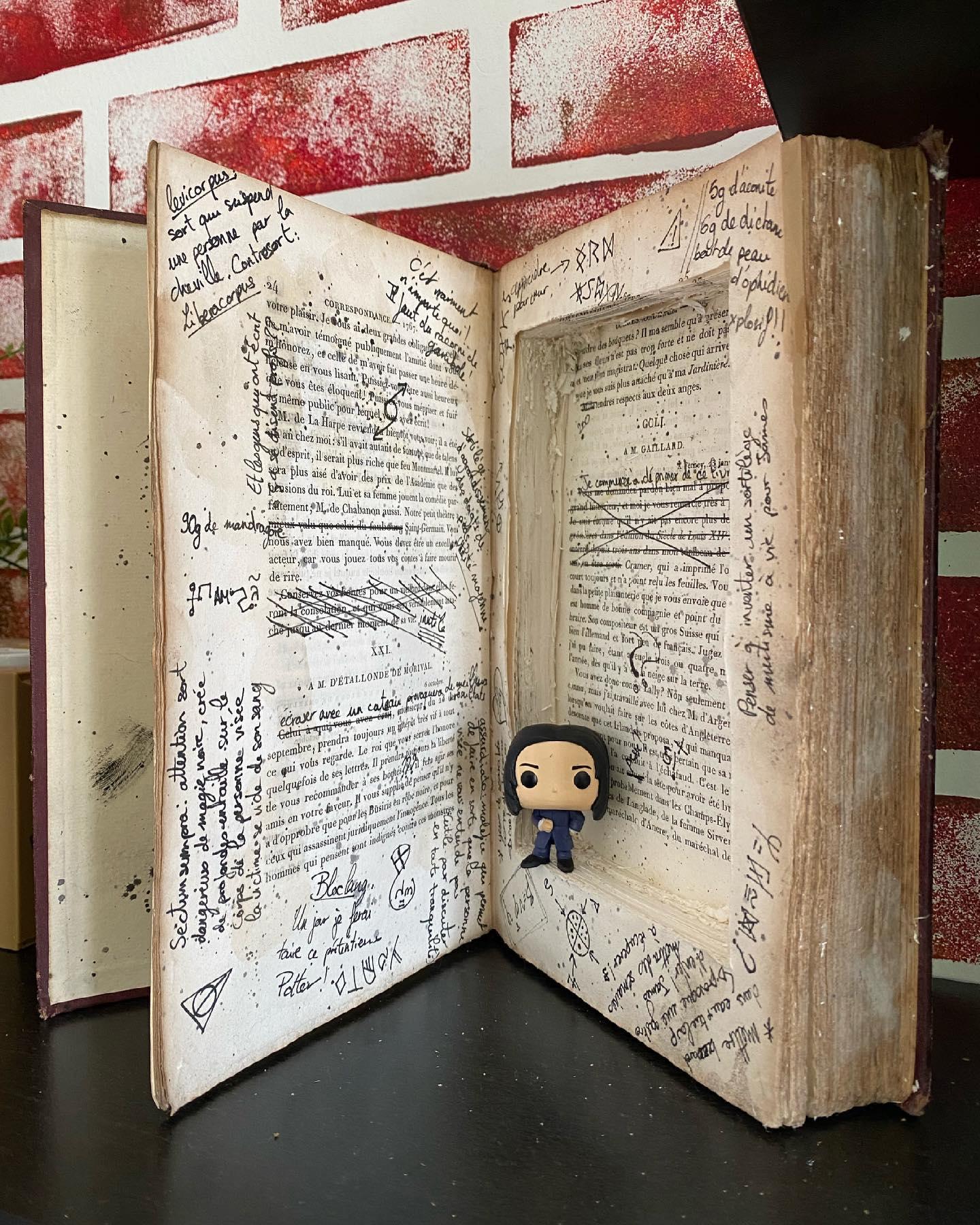 Le livre des potions prince de sang mêlé