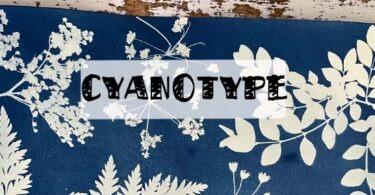 cyanotype astuce pour débuter