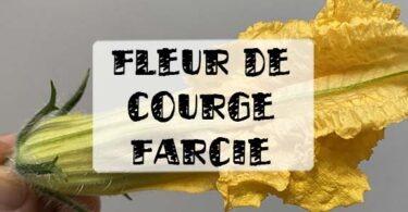recette fleurs de courges farcies