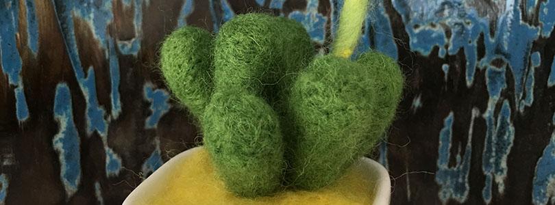 Cactus en laine cardée