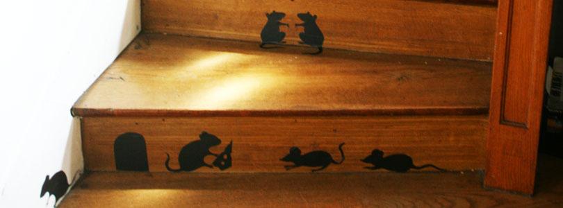 escalier rempli de souris ciloubidouille. Black Bedroom Furniture Sets. Home Design Ideas